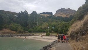 St Thomas of Canterbury College students tramping towards a bay